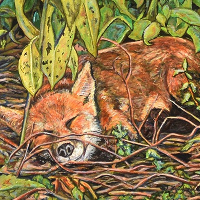Naptime by Lynden Cowan