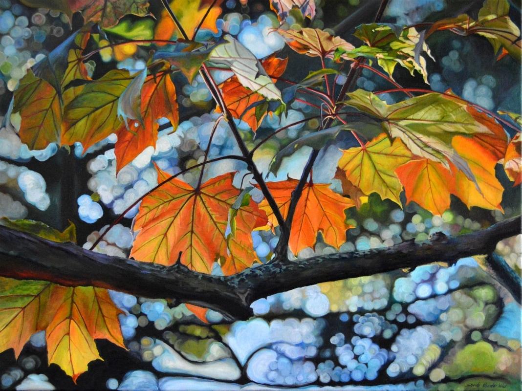 Canopy Of Love by Sheila Van Wier