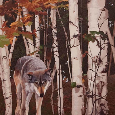 Lone Wolf by Margaret Pardy