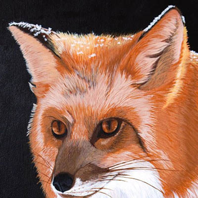 Sly Red Fox by Margaret Pardy