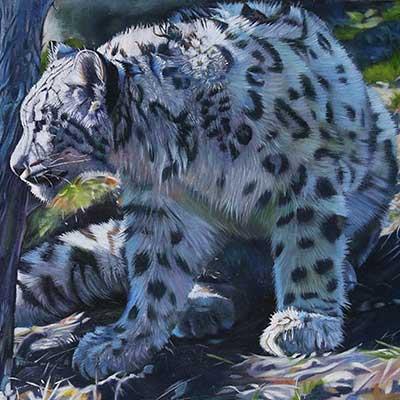 Snow Leopard by Kelly McNeil